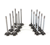 Intake Exhaust Valve Kit